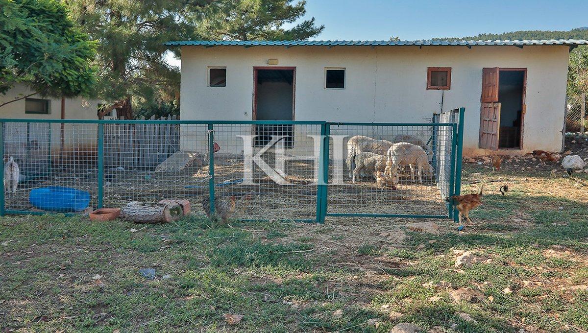 1_0020_İslamlar village villa for sale, commercial property for sale near Kalkan and Patara beach_52A8224