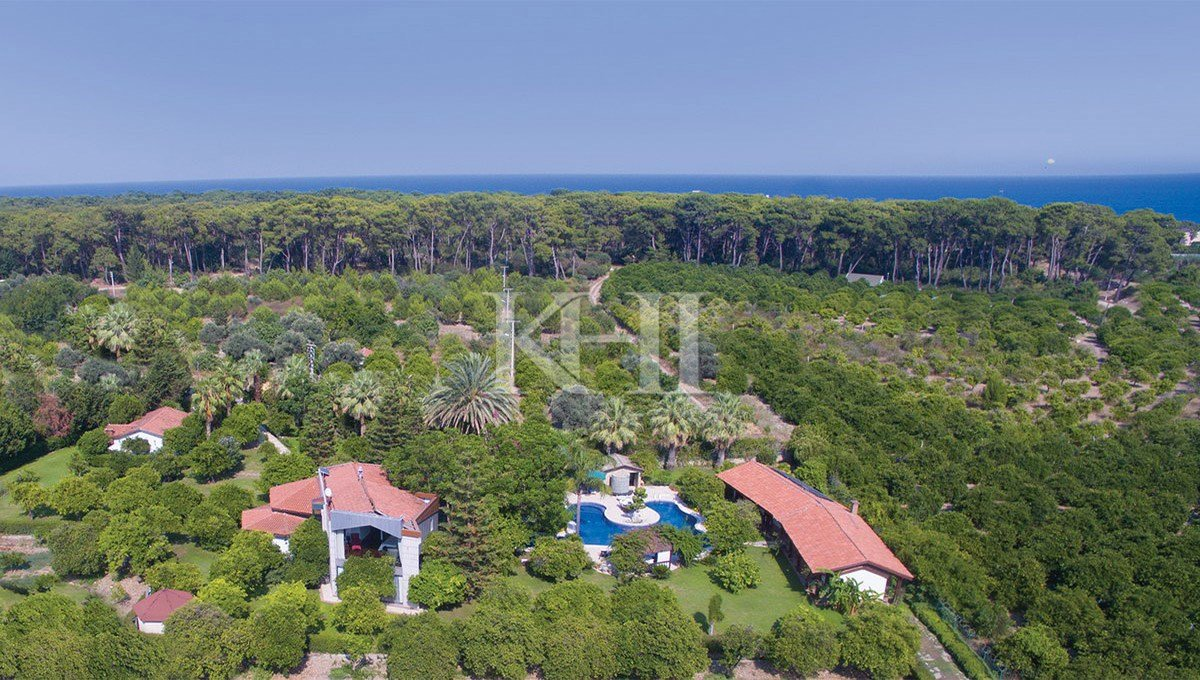 Special House with an Absolute Privacy in Antalya